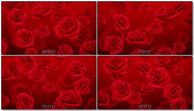 红色玫瑰浪漫心型唯美婚礼背景视频模板