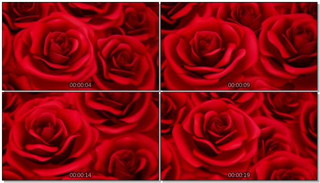 红色浪漫玫瑰爱心唯美婚礼背景视频模板