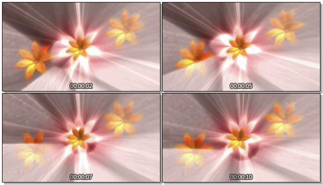 简洁金色花卉背景视频素材