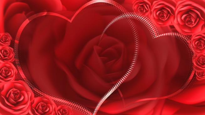 红色双心玫瑰花浪漫心型唯美婚礼背景视频素材