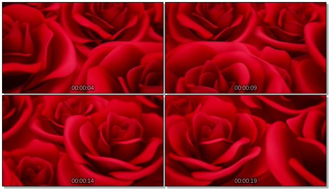 大红玫瑰浪漫心型唯美婚礼背景视频模板