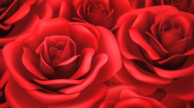 红色浪漫玫瑰爱心唯美婚礼背景视频素材