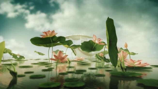 微立体水中荷花阳光背景视频素材