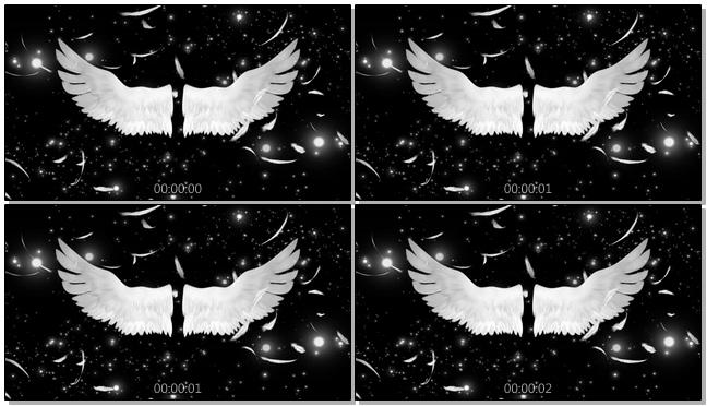 高端时尚新娘出场天使翅膀背景视频素材
