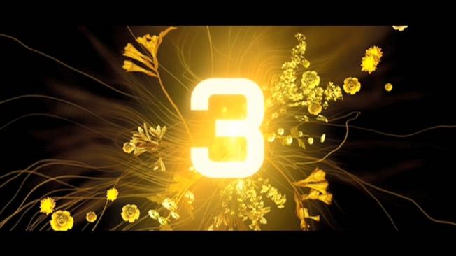 金色花卉倒计时5秒背景视频素材