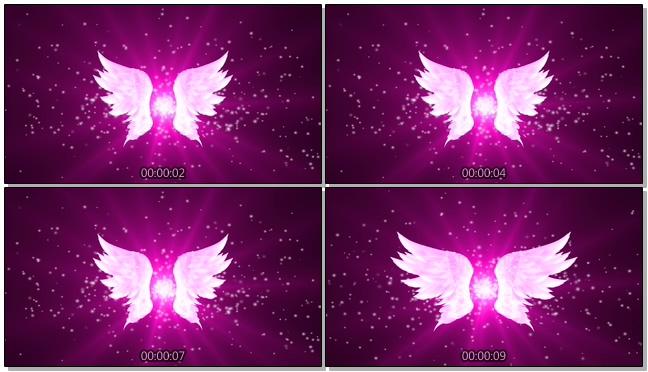 大气紫色唯美翅膀背景视频素材