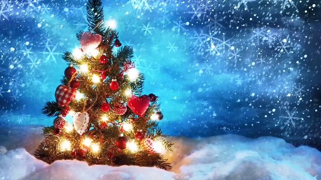 蓝色唯美圣诞树背景视频素材