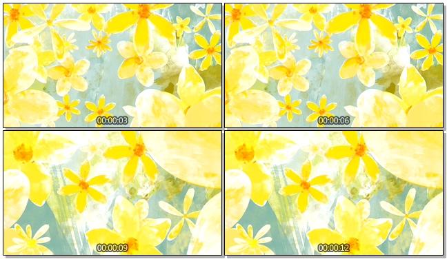 清新手绘大雏菊唯美浪漫背景视频素材