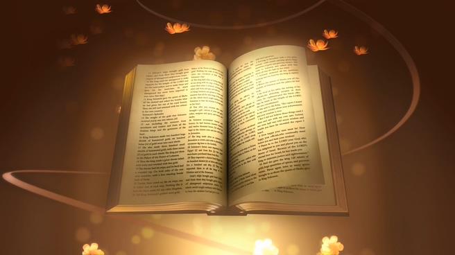 唯美花瓣圣经翻页背景视频素材