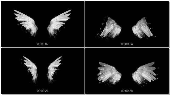 简洁天使半透明翅膀背景视频素材