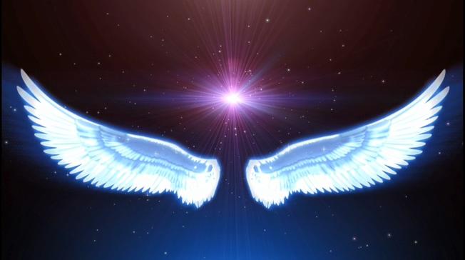 大型炫彩翅膀通用背景视频素材