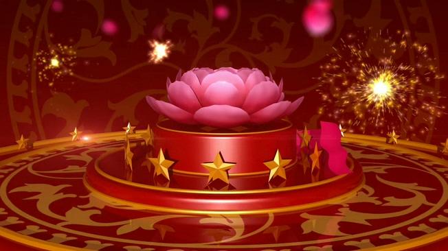 牡丹花开通用背景视频素材2