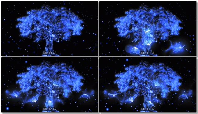 蓝色光效蝴蝶树音乐背景视频素材