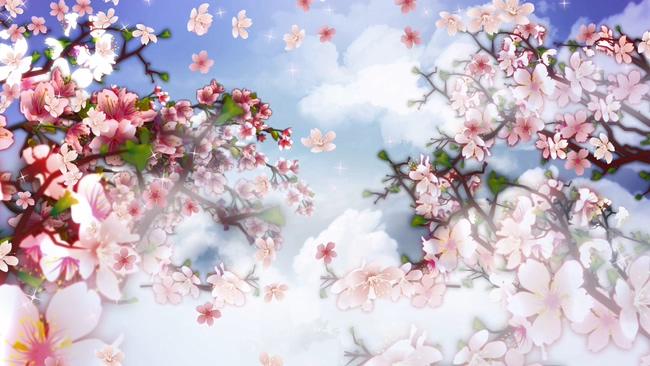 桃花盛开音乐背景视频素材