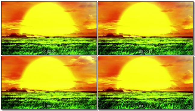 夕阳太阳大气草原背景视频素材