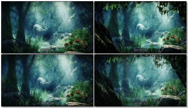 梦幻森林场景夜景视频素材