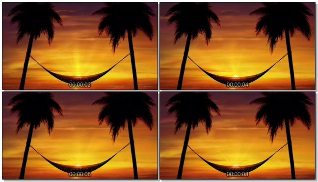 夕阳下的椰子树吊床背景视频素材