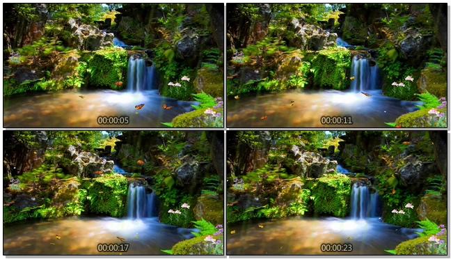 绿野仙踪水流森林音乐背景视频模板