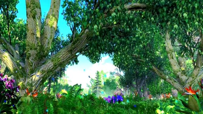 春天森林浪漫背景视频素材