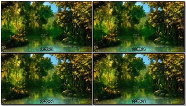 夏季湖边池塘唯美风景视频素材