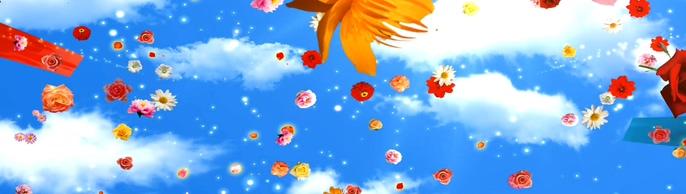 浪漫唯美的鲜花盛开爱我中华歌曲完整视频素材