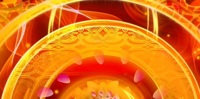 唯美梦幻的吉祥牡丹花开的视频素材