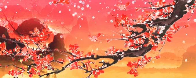 唯美梦幻的梅花盛开飘落舞台的视频素材