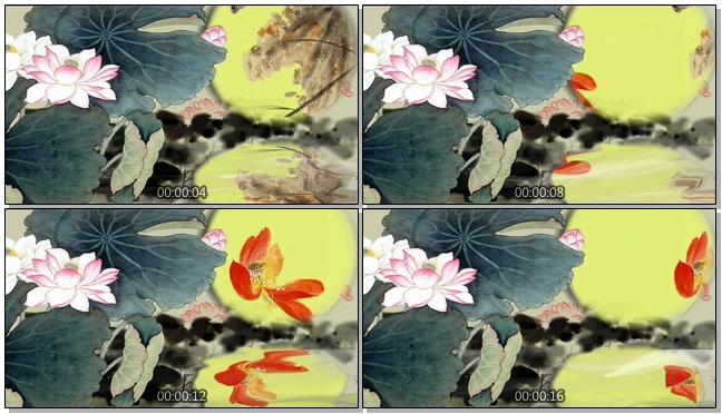 古典优美的水墨荷花金鱼游玩的视频素材