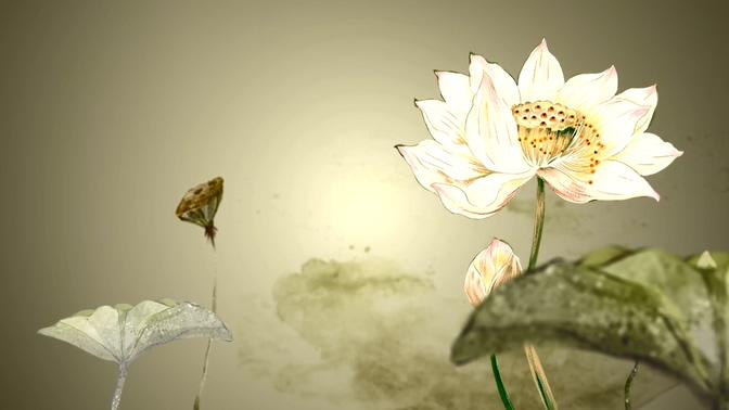 浪漫唯美的中国风水墨荷花动态国画视频素材