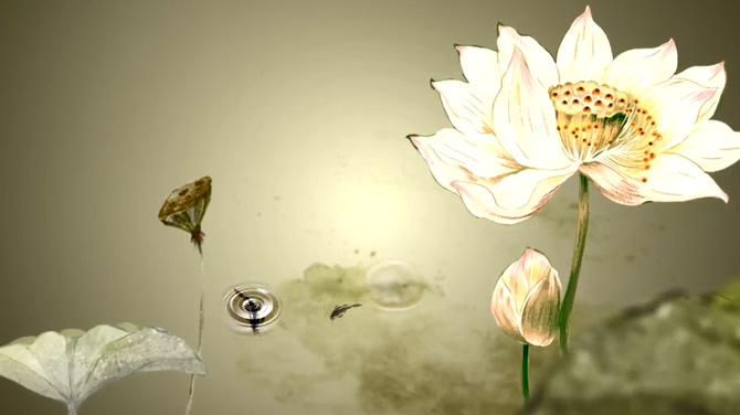 唯美浪漫的江南水墨荷花盛开视频素材