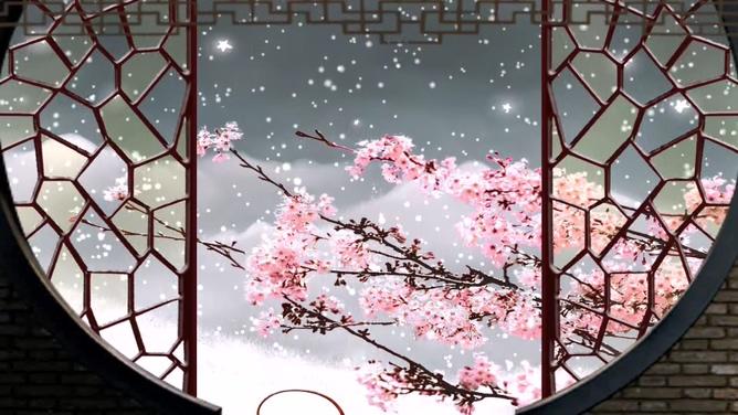浪漫唯美的屏风外雪中梅花飘落的视频素材