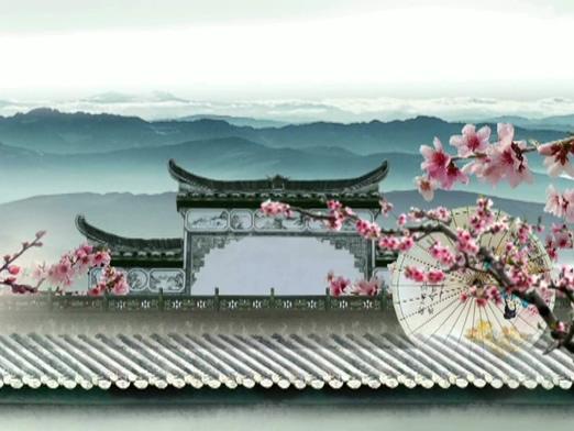 传统的古典水墨油纸伞视频素材