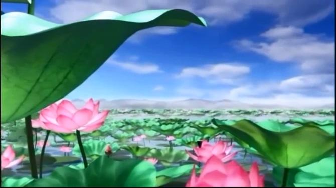 古风池塘中荷花盛开的视频素材