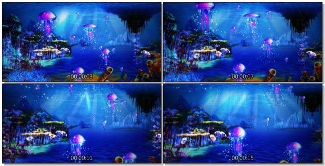 浪漫唯美的海底世界水母游动的实拍视频