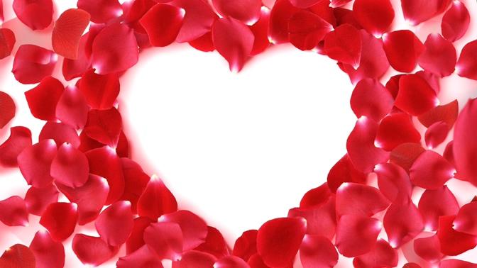 红色浪漫花瓣桃心背景视频素材