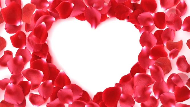 唯美梦幻的红色心形花瓣边框视频素材