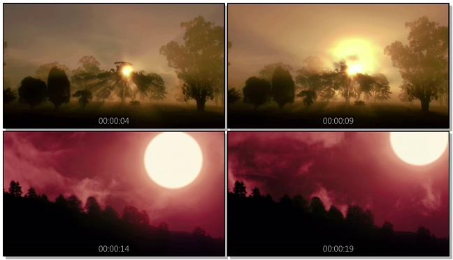 火红的日出从树荫中洒落的实拍视频