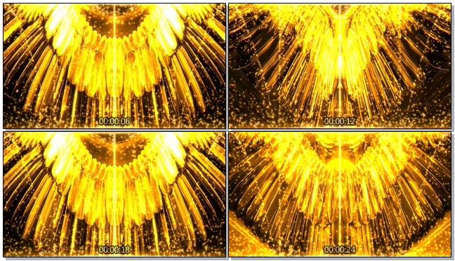 高端奢华的金色翅膀张开视频素材