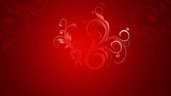 红色花卉背景视频素材