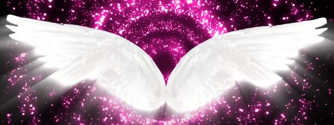 下载2011最新版qq_浪漫紫色粒子爱心背景视频_视频素材免费下载_模板天空