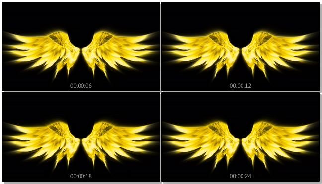 大气金色翅膀婚礼开场背景视频