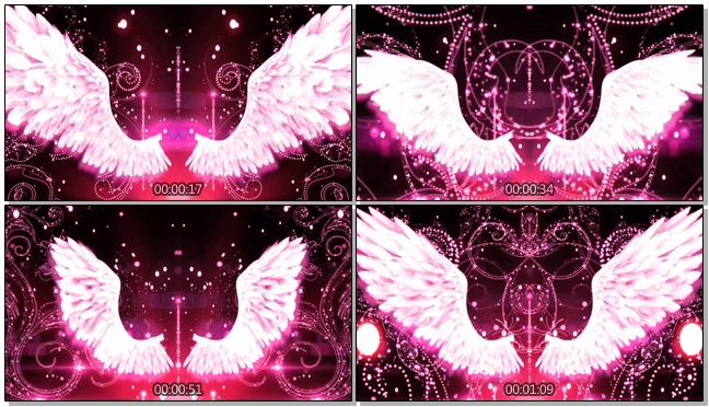 粉紫色唯美天使翅膀背景视频