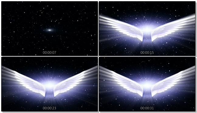 大气的光效翅膀婚礼开场背景视频