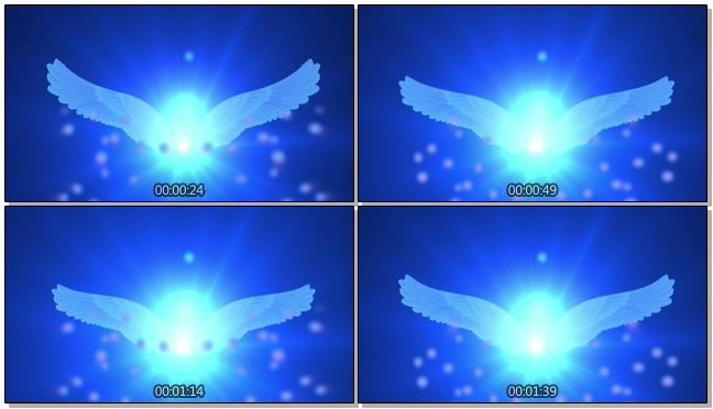 蓝色简洁天使翅膀背景视频