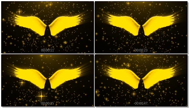金色时尚翅膀星星背景视频