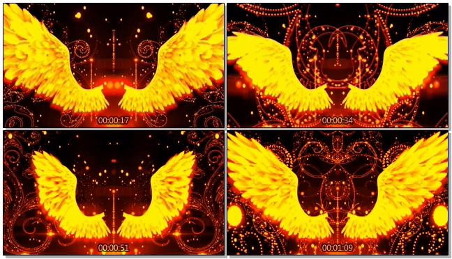 金色奢华燃烧的翅膀背景视频