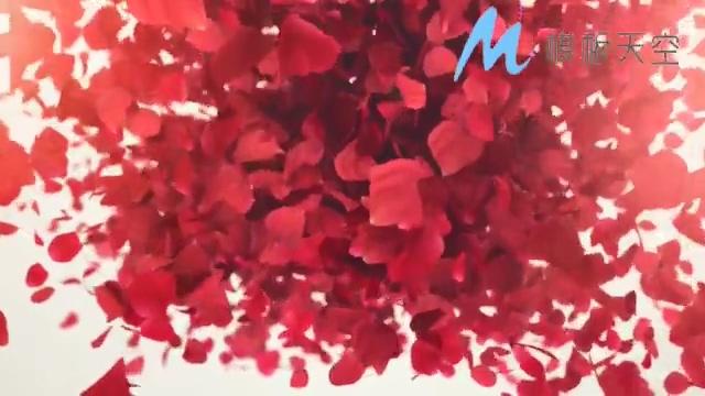 红色旋转飞舞动态花瓣文字LOGO标题AE模板
