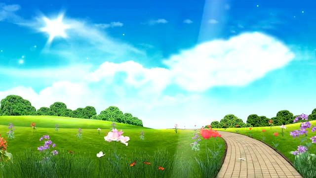 蝴蝶在大自然和花朵间飞舞的视频素材