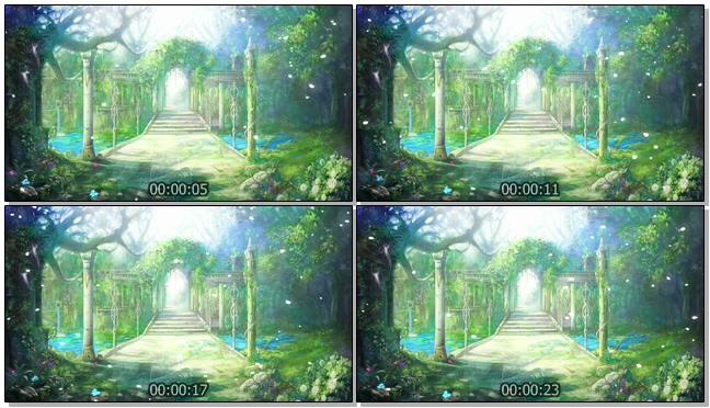 梦幻如仙境的森林视频素材(有音乐)