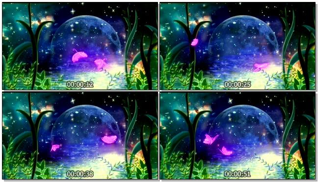 唯美梦幻的紫色蝴蝶飞舞在月色中的视频素材